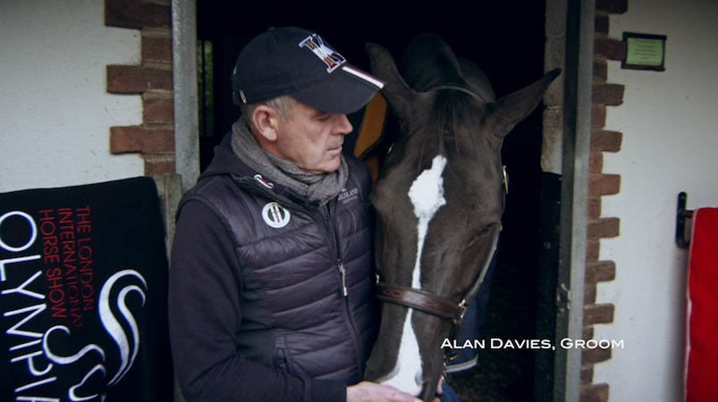 A Tribute to Valegro