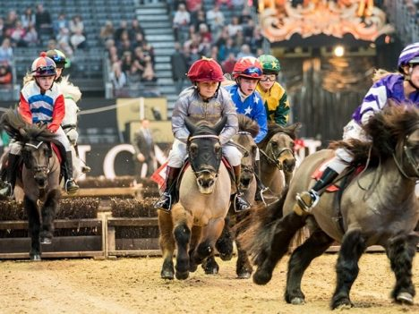 shetland pony grand national 2017