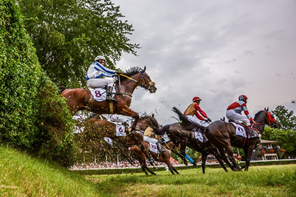 Crystal Cup & Ladies Day 2019